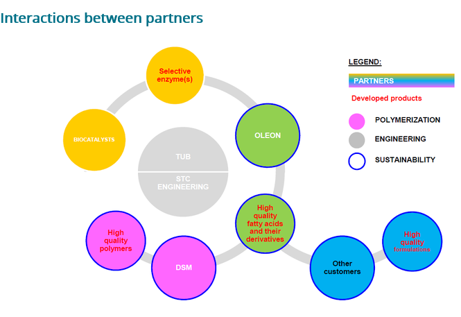 lipes partners