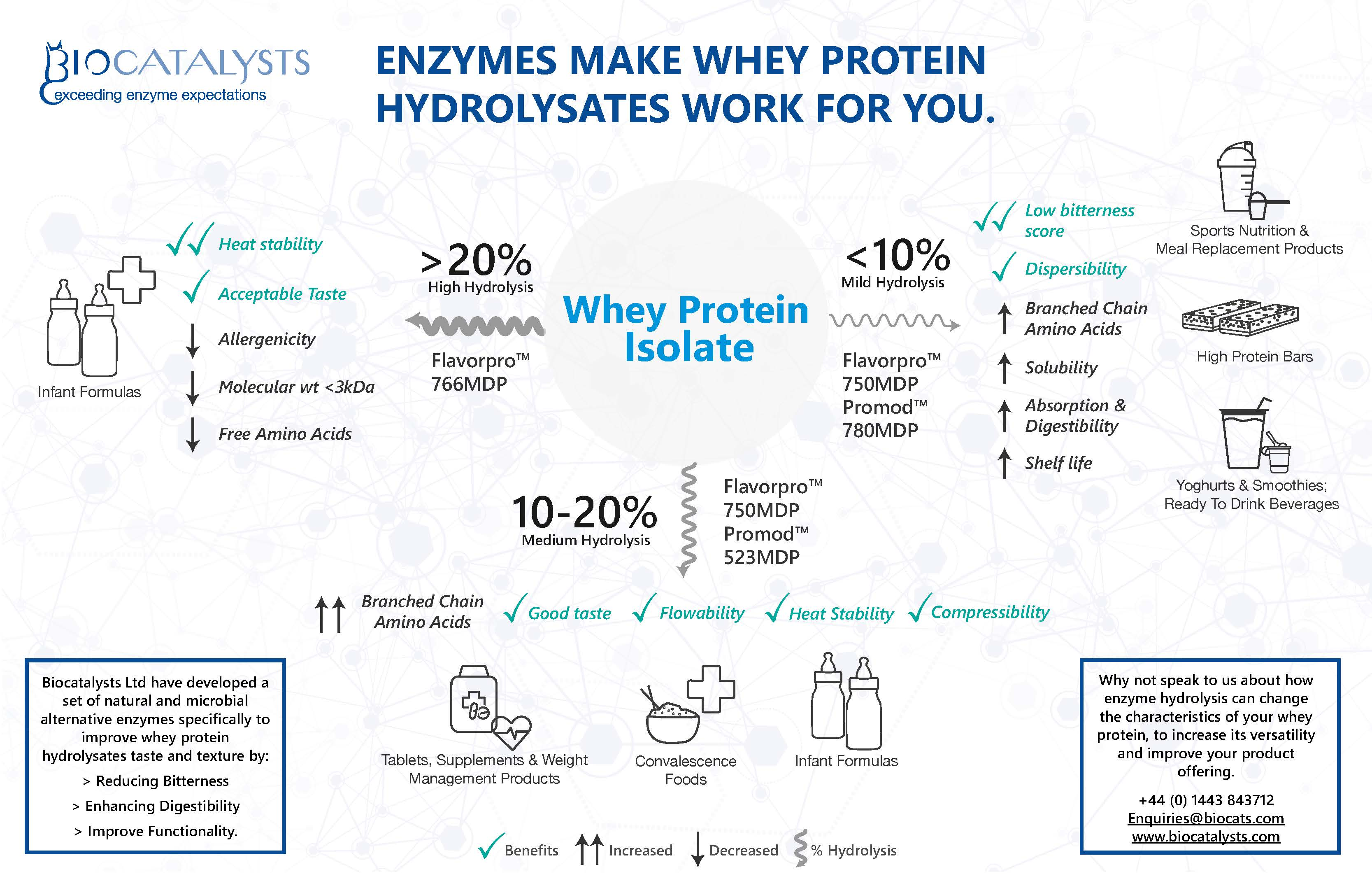 Whey Protein Hydrolysates Infographic