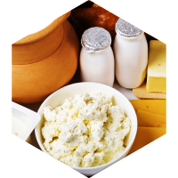 Dairy/Enzyme Modified Cheese